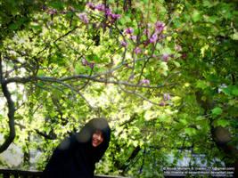 Esperandote by Nienna-M-Seventhmoon