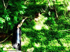 presencia en el bosque by Nienna-M-Seventhmoon