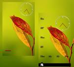 Orange leaf.......