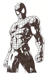 Spiderman by Leoxem