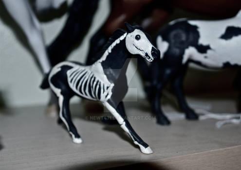 CM skeleton horse
