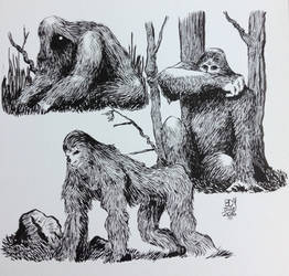 Bigfoot, Various Postures. by BDMcKown