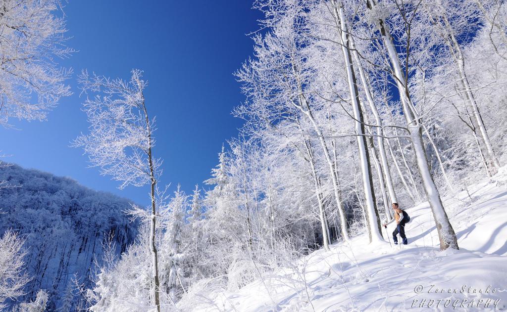 Winter wonderland by Swen11