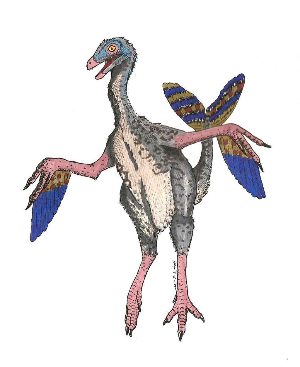 Caudipteryx Dance