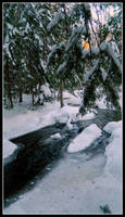 Frost Stream