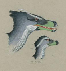 Acheroraptor Pair