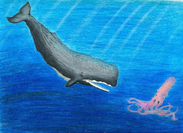 whale sperm payload