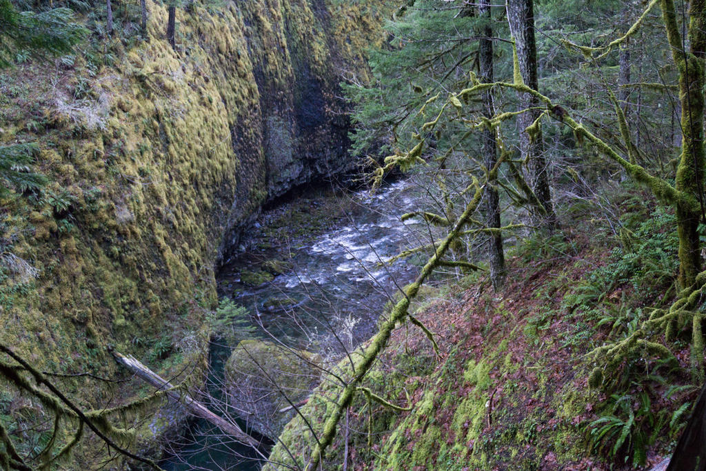 Columbia Gorge by The-Chez