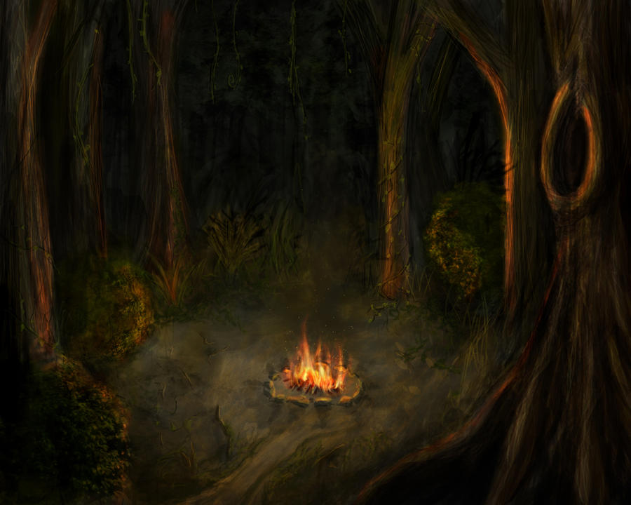 http://img09.deviantart.net/b345/i/2009/320/1/c/campfire_in_the_forest_by_such_a_dreamer.jpg