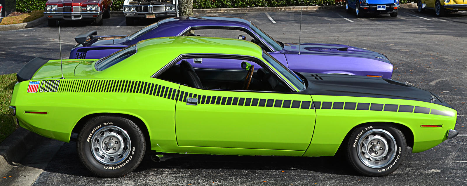 I'd be happy with just one Cuda by Nutdeep