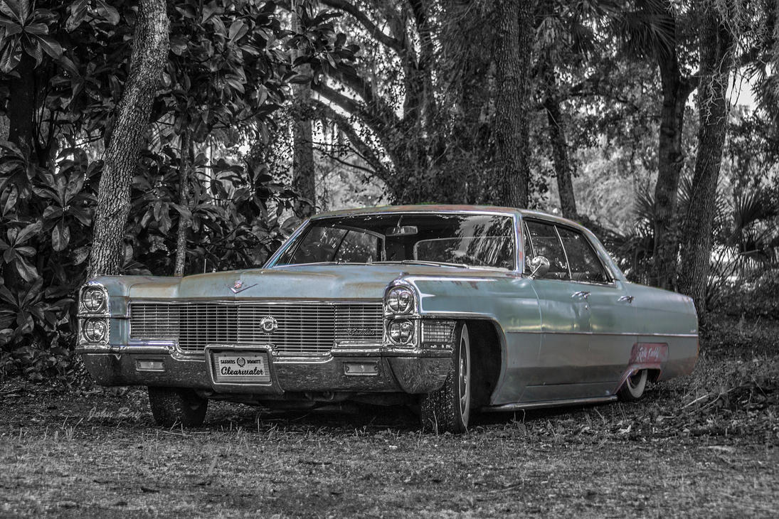 Caddy in the woods by Nutdeep