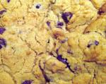 Cookie Texture 1-Choc Chip