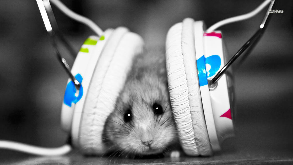 4281 Dubstep Hamster 1366x768 Music Wallpaper By Andon29
