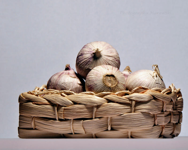 garlic by Murawski
