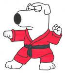 Kung Fu Brian