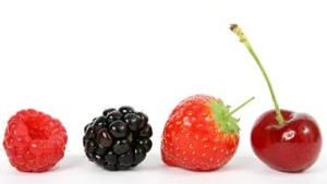 dewberrybramble's Profile Picture
