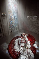 Trinity Blood: The end