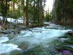 Campsite Views by TreeClimber