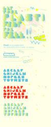 Plasti Puzzle Font by Rodier