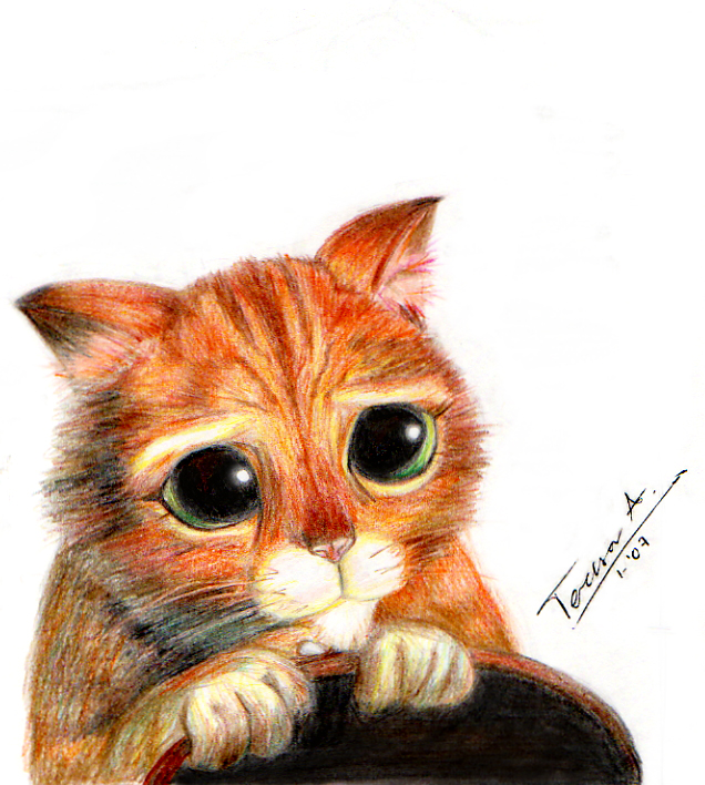 Imagenes gato shrek - Imagui