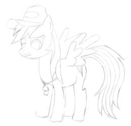 Rainbow Dash Sketch by MattAmanda05