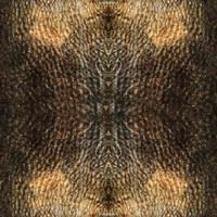 Random_Texture_0001 by JamesPodesta91