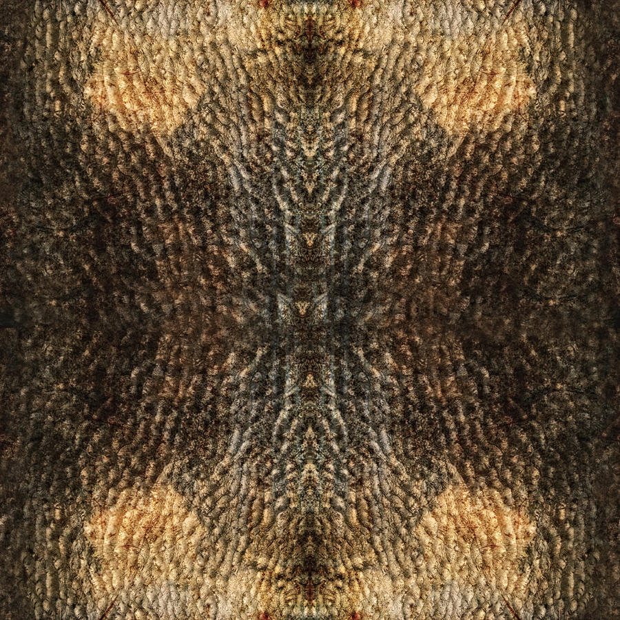 Random_Texture_0001