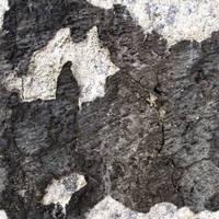 Concrete_0001 by JamesPodesta91