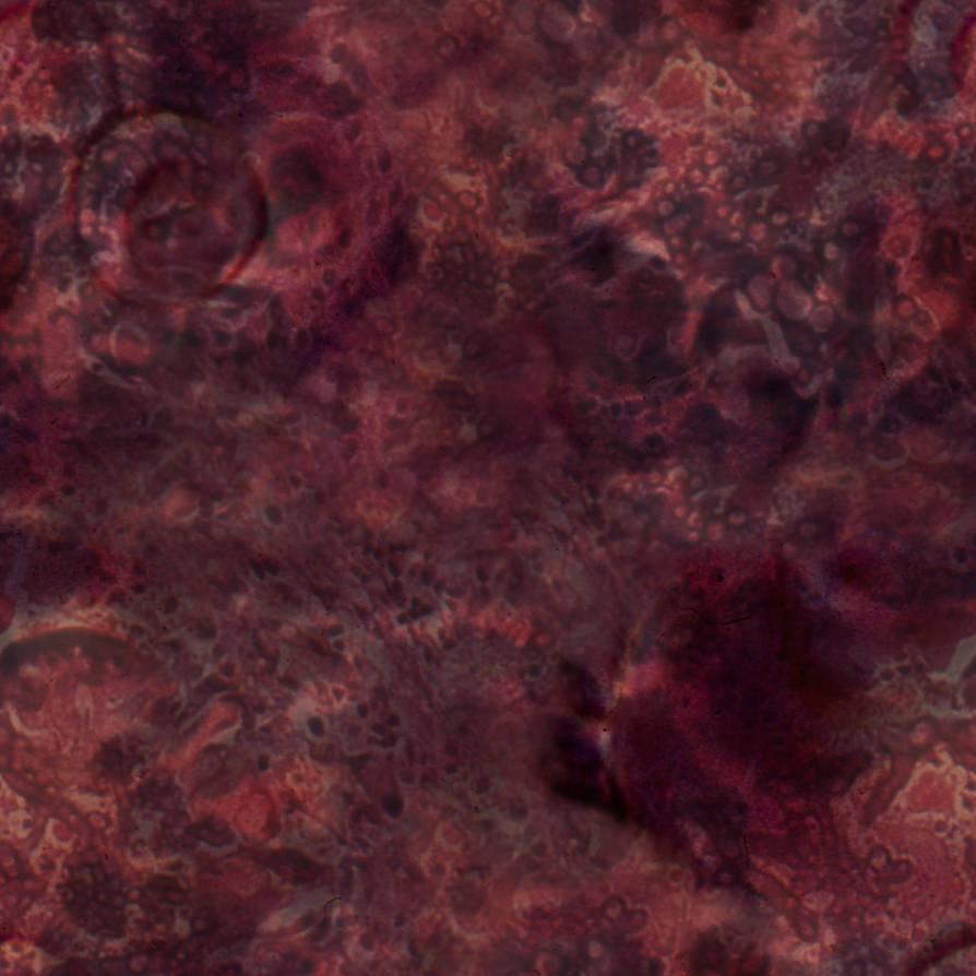 Seamless_Monster_Flesh_0001 by JamesPodesta91