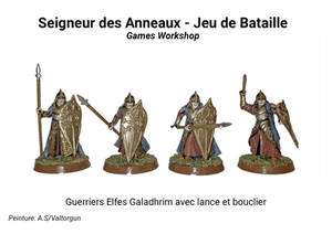 Warriors Elven lancer with shield Galadhrim