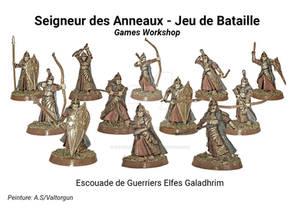 Escouade de Guerries Elfes Galadhrim