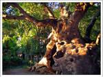 The Tree by Arathrim