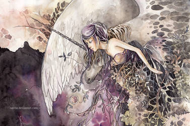 fairy by sinvia