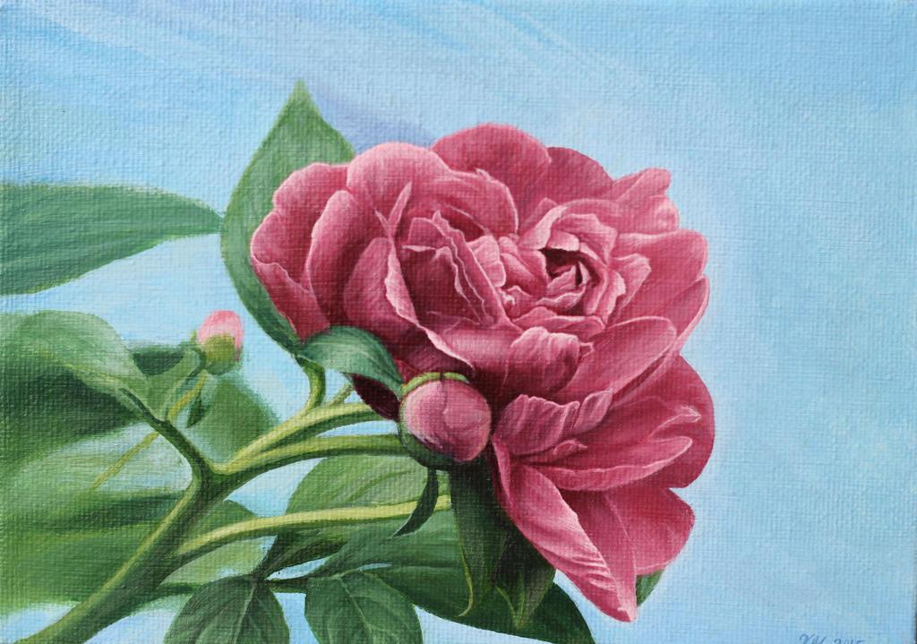 Blooming Peony by Mimitchki