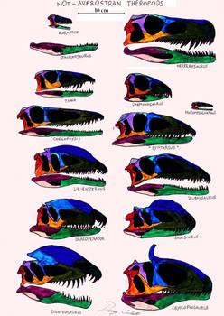 Not-Averostra Theropoda skull comparison
