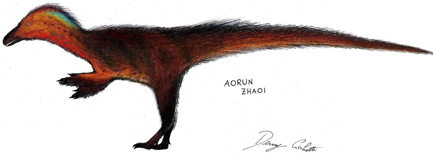 Aorun by Dennonyx