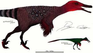 Austroraptor and Buitreraptor by Dennonyx