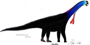 Cassowary Camarasaurus by Dennonyx