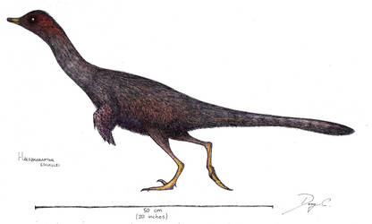 Halszkaraptor sketch by Dennonyx