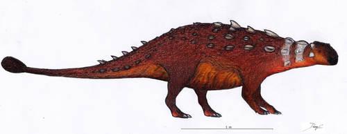 Akainacephalus by Dennonyx