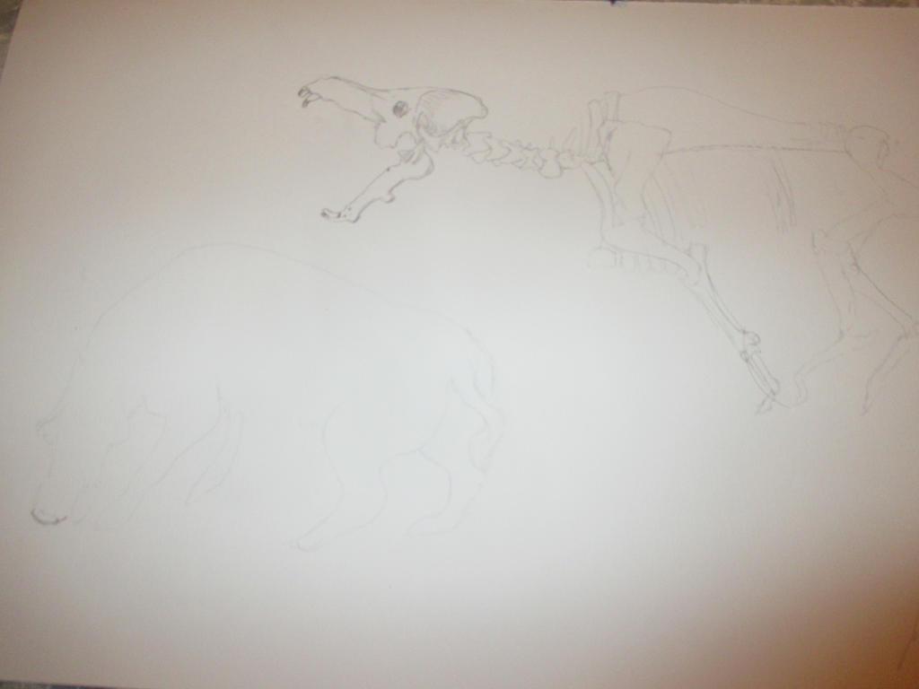 Archaeotherium 1 by Nekojika