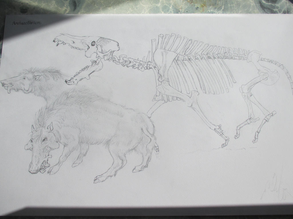 Archaeotherium 2 by Nekojika