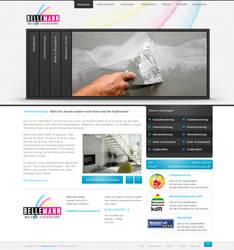 Company Portfolio by h1xndesign