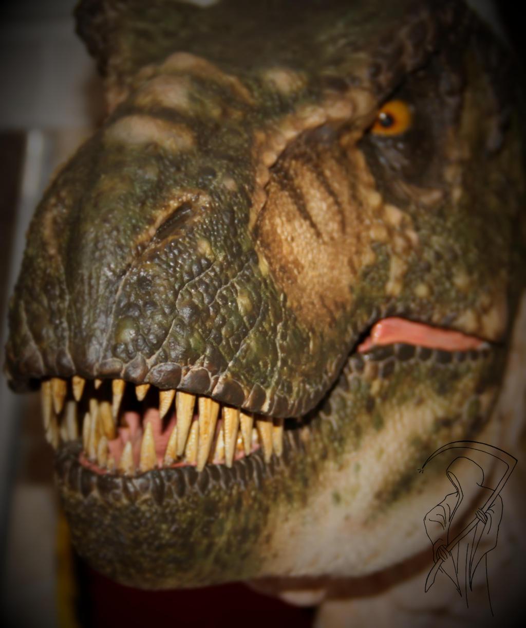 Buck T.rex close up.