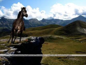 The Jump by HorsesAreMagic
