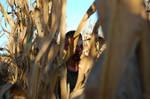 Killing Fields - Lurking