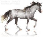 Free lineart: Gaited horse