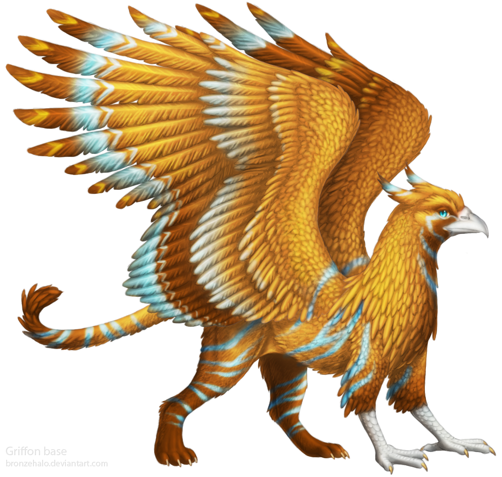 free griffon lines base by bronzehalo on deviantart