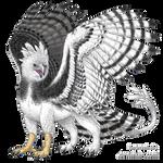 Harpy Eagle griff