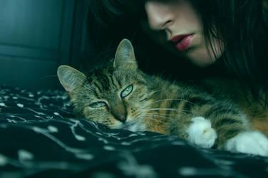 My Beautiful Cat I by TrashyDiamond